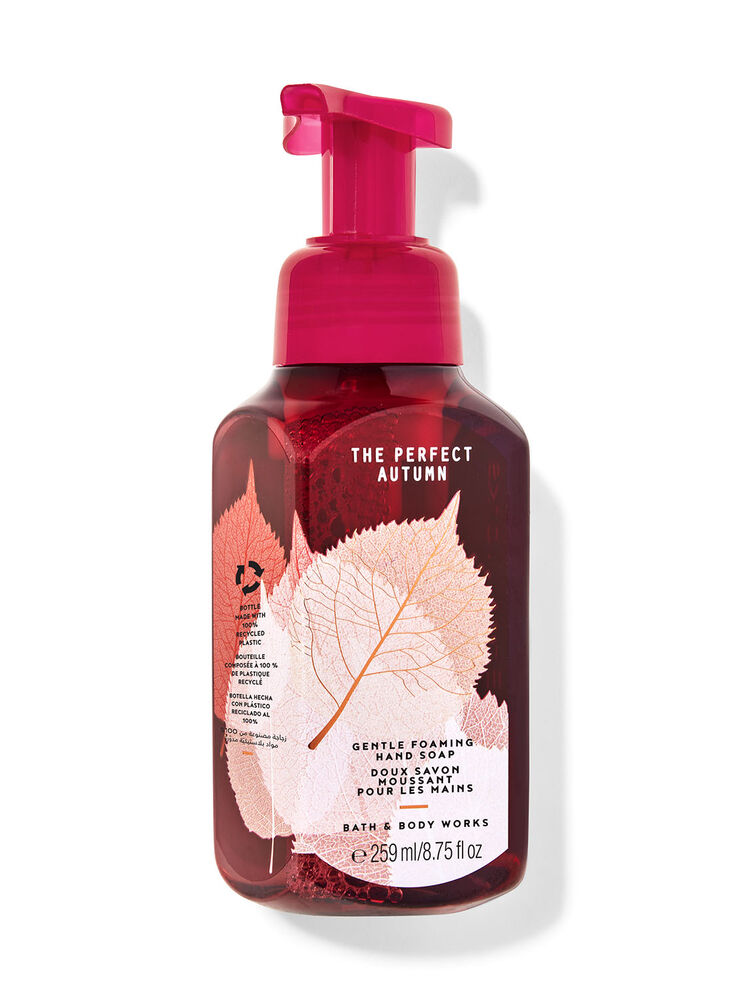 The Perfect Autumn Gentle Foaming Hand Soap